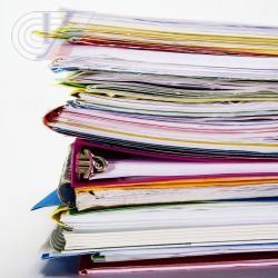 Годовая бухгалтерская отчетность за 2013 год